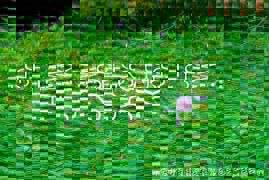 20120223-173519.jpg